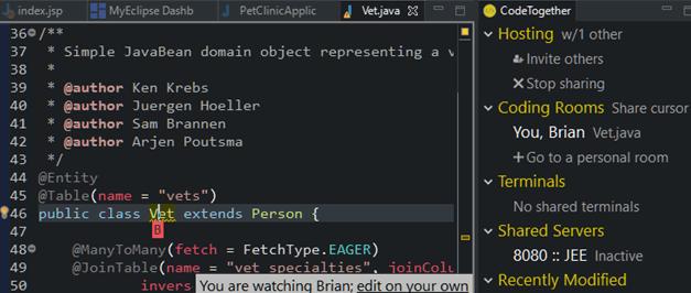 CodeTogether On-Premises UI
